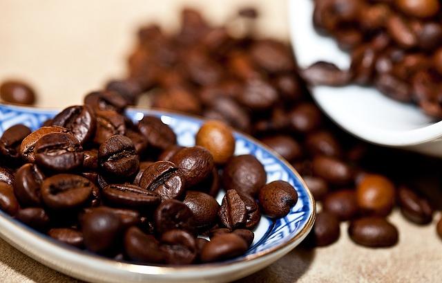 o que é café orgânico